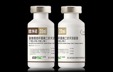 副猪嗜血杆菌病二价灭活疫苗(1型LC株+5型LZ株)